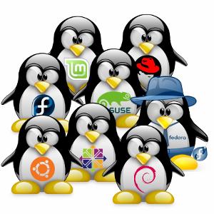 [Translate to Englisch:] Linux-Support, SuSE, SLES, Debian, RedHat, Slackware, SE-Linux, KaliLinux, Fedora, BSD, Linux-Experte, Raspberry Pi